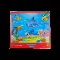 COLLEEN สีไม้ระบายน้ำ 24 สี
