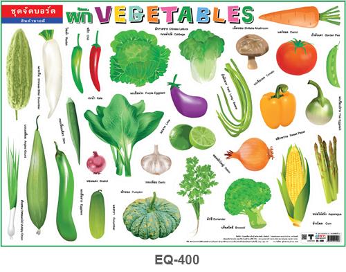 โปสเตอร์กระดาษ ชุดจัดบอร์ดผัก #EQ-400 แผ่นภาพโปสเตอร์สื่อการเรียนรู้ ประกอบการศึกษา