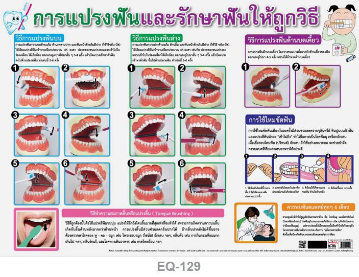 โปสเตอร์กระดาษ การแปรงฟันและรักษาฟันให้ถูกวิธี #EQ-129 แผ่นภาพโปสเตอร์สื่อการเรียนรู้ ประกอบการศึกษา