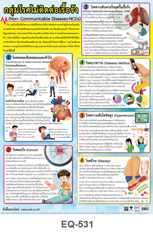 โปสเตอร์กระดาษ กลุ่มโรคไม่ติดต่อเรื้อรัง #EQ-531 แผ่นภาพโปสเตอร์สื่อการเรียนรู้ ประกอบการศึกษา